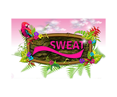 Catálogos de <span>Sweat</span>