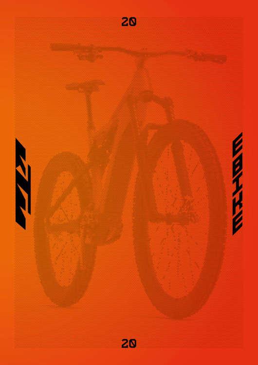 Ofertas de KTM, KTM-E-Bike-2020