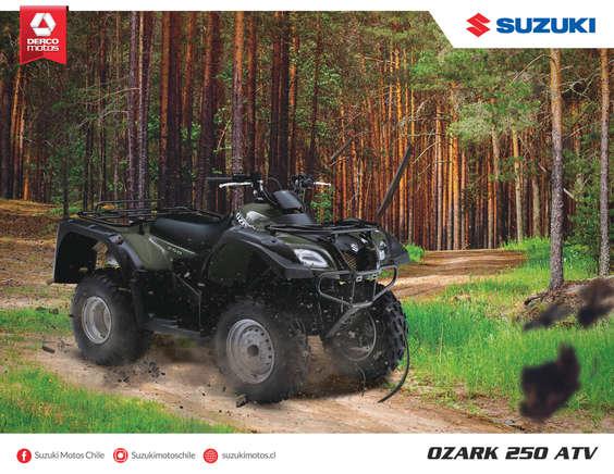 Ofertas de Suzuki Motos, Ozark 250 ATV