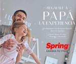 Ofertas de Colchones Spring, Regalo para Papá