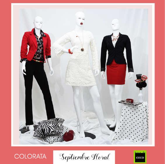 Ofertas de Beso de Coco, Colección Colorata