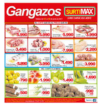 Gangazos Surtimax